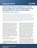 Enhancing Cultural Competence in Social Service Agencies: A Promising Approach to Serving Diverse Children and Families