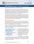 Overview of the Social Bullying: Correlates, Consequences, and Prevention resource page