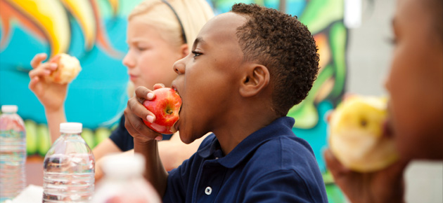 Checkout This Toolkit to Help Kids Eat More Healthy