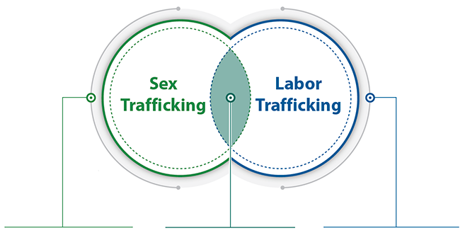 A VENN diagram showing a circle with Sex Trafficking ont he left, a circle with Labor Trafficking on the right, and an area of overlap in the middle.